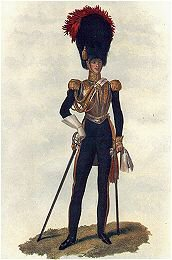 Everard William Bouverie. Colonel of the Royal Horse Guards 1845-1853 (P)
