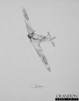 Bob Doe - Spitfire Ace by Graeme Lothian. (P)