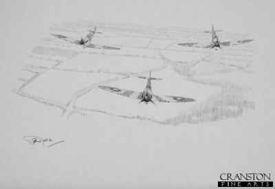 Tribute to the Spitfire Pilots by Graeme Lothian. (P)