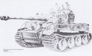 Tiger I by Randall Wilson.