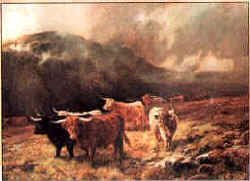 Highland Cattle III by Louis Bosworth Hurt.