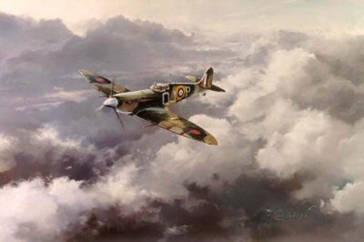 Spitfire by Robert Taylor