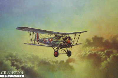 Bristol Bulldog by Barrie Clark.