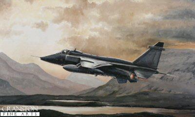 Jaguar Sunset by Michael Rondot.