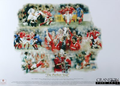 The Perfect Year - Wales Grand Slam Champions 2005 by Darren Baker.