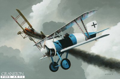DHM1677B. Leutnant Hermann Becker by Ivan Berryman. <p> Replacing Ewald Blumenbach as commander of Jasta 12 in May 1917, Hermann Becker continued his impressive scoring rate utilising the superb Siemens-Schuckert D.IV fighter, shown here in Beckers distinctive blue and white livery. One of the most advanced fighters of World War 1, this aircraft was possessed of an incredible rate of climb, taking just some 12 minutes to reach 16,000ft and having an operational ceiling of 26,240ft. Becker is depicted here claiming one of the many Spads that he shot down on his way to a final victory total of 23, all of them with Jasta 12. <b><p> Small limited edition of 30 prints. <p> Image size 12 inches x 8 inches (31cm x 20cm)
