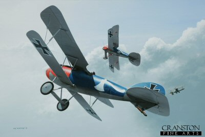 DHM1752PC. Leutnant d R Paul Strahle by Ivan Berryman. <p>The distinctive blue and red livery of these two Albatros D.Vs identify them as Jasta 18 machines in Berthold Colours, a reference to their commander at that time, Oblt Rudolf Berthold. The nearest aircraft is that of Leutnant der Reserve Paul Strahle who scored six victories with this unit before taking his aircraft (4594/17) with him to Jasta 57 where he would score a further 8. Each aircraft carried a personal emblem, in the case of Strahle a white axe whilst the similar aircraft of Ltn d R Arthur Rahn displays a diamond pattern. The fuselage crosses on both aircraft were crudely painted over and are still just visible beneath the blue. <b><p>Collector&#39;s Postcard - Restricted Initial Print Run of 100 cards.<p>Postcard size 6 inches x 4 inches (15cm x 10cm)