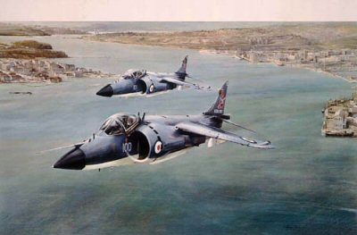 Sea Harriers by Robert Taylor.