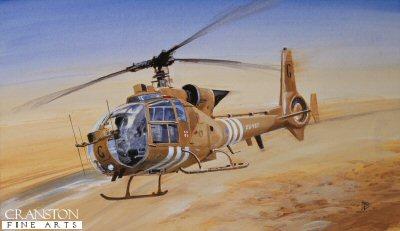 Desert Gazelle by David Pentland.