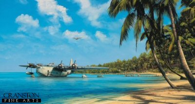 Tropical Duties by Richard Taylor.