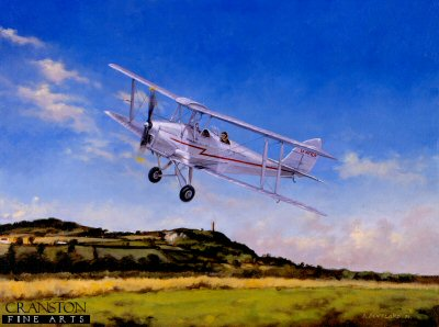 Tigermoth by David Pentland.