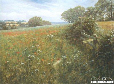 Poppy Meadow by David Dipnall.