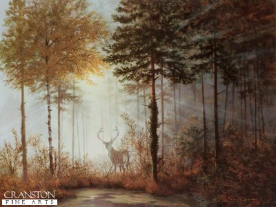 Quiet Forest by Gerald Coulson