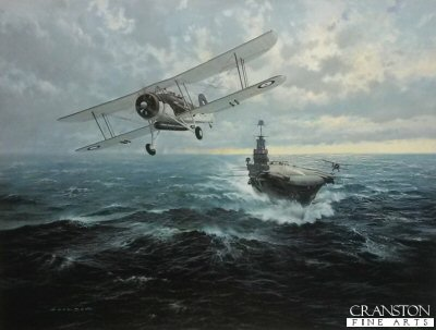 To Sink the Bismarck by Gerald Coulson.