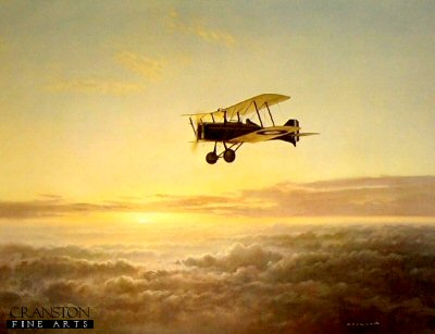 The Lonely Sky by Gerald Coulson.