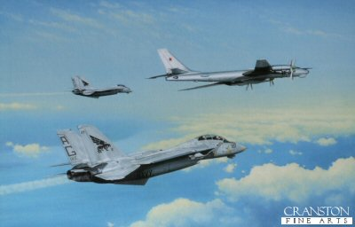 The Bear and the Tomcats by Keith Aspinall.