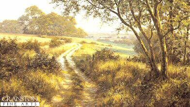 Evening on the Downs by David Dipnall.