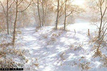Where Bluebells Grow by David Dipnall.