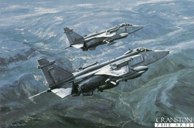 Jaguars Over Bosnia by Michael Rondot.
