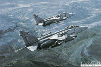 Jaguars Over Bosnia by Michael Rondot