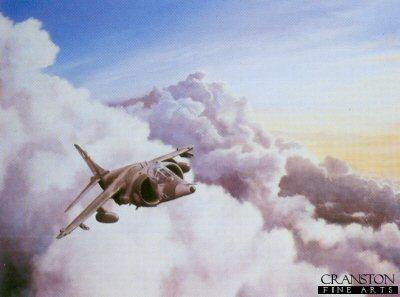 Harrier by Colin Walker.