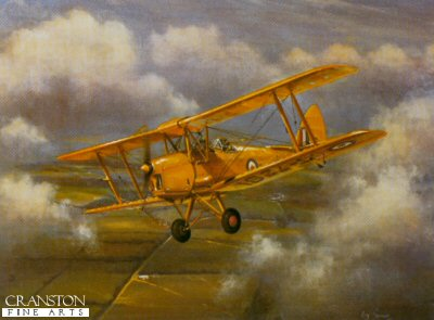 Tiger Moth by Roy Garner.