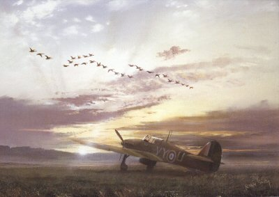 The Fly Past by Robin Smith.