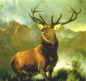 Monarch of the Glen by Sir Edwin Landseer.
