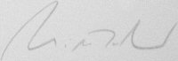 The signature of Leutnant Zur See Willibald Volsing