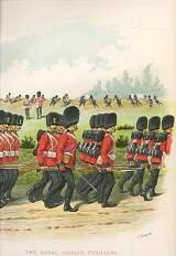 The Royal Dublin Fusiliers (102nd & 103rd Foot) by Richard Simkin (P)