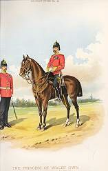 The Princess of Wales Own Yorkshire Regiment (19th Foot) by Richard Simkin (P)