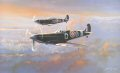 Spitfire Patrol by Philip West.