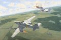 Ben Drew shot down two Me262s in October of 1944. The painting shows the second Me262 as the main subject with Ben&#39;s <i>Detroit Miss</i> peeling off at full speed after he showered the aircraft with the fatal bullets.  The shoot down action was so quick in occurring, (31 seconds), that Drew never saw what had actually happened to the pilot, Oblt. Paul Bley, who slipped over the side in time to live to fight again.  As fate would have it Oblt. Bley was killed 2 weeks later when his 262 developed trouble while taking off and he plowed into a tractor at the end of the field.