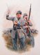 DHM702.  Confederate Infantryman of the 19th Virginia by Chris Collingwood.