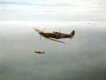 Spitfire Mk1As of 92 Squadron.