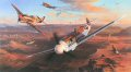The air war fought in the skies above the inhospitable wastelands of the North African desert were among the most hotly contested of the war. The outcome of the bitter land war raging below largely depended upon who controlled the air space above, a......