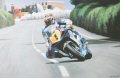 David Jefferies, 1000 TAS Suzuki, powers out of Waterworks on his way to a new outright TT lap record - lap 2 Senior TT 2002.