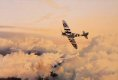Robert Taylors spellbinding painting, Wings of Glory, paying tribute to Mitchells immortal fighter, features the MkX1X Spitfire of the RAFs Battle of Britain Memorial Flight. Powered by the Rolls-Royce Griffin engine providing maximum speed of 450mph......