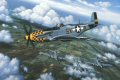 The painting depicts a P-51D Mustang (flown by William Bailey of the 353rd Fighter Group) flying escort for B-17 Flying Fortresses of the U.S. Armys Eighth Air Force. The scene is over the French countryside during late 1944, and several more hours of high altitude flying lies ahead of these pilots before the days work is over. Bombing played a major role in the Allies victory in Europe. The RAF relied primarily on night bombing which was also called strategic bombing. Day time bombing was a necessity for hitting specific targets such as munition plants, dams, and submarine pens. The Mighty Eighth took on responsibility for most of the day time bombing missions. The hazards and discomforts of high altitude flying, the perils of enemy flak batteries, and the threat of enemy fighters made these missions exceedingly dangerous until only very late in the war. Fighter escort was critically important in improving the odds of a successful mission, and the P-51 became arguably the premier aircraft for providing that cover. The P-51 is generally acknowledged as Americas top fighter plane of World War II. The first Mustangs were ordered by the British Government in 1940. The USAAF was initially reluctant to order the Mustang, having already committed itself to the P-38 Lightning, the P-47 Thunderbolt, the P-40 Warhawk, and the P-39 Airacobra. In 1944 an improved version of the Mustang, the D, came off North American Aviations assembly line in California. It was dramatically altered from earlier versions, as major changes in fuselage design were incorporated to improve pilot visibility. The P-51D was powered by a Packard-built, Rolls Royce-designed, liquid cooled V-12 engine which generated 1,612 HP. The Mustang had a top speed of 436 MPH, a range of 949 miles, and an operational ceiling in excess of 42,000 feet. Nearly 8,000 P-51Ds were produced. In service with the USAAF Mustangs flew in excess of 200,000 missions, and were credited with destroying nearly 5,000 enemy aircraft. The Mustang was unique in its ability to provide long range fighter escort, and this greatly enhanced the effectiveness of Allied bombing missions. On returning from their escort missions Mustangs would generally split into squadrons and take varying routes home looking for targets of opportunity.
