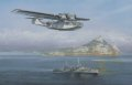 Royal Air Force catalina over flys a Royal Navy Cruiser of Gibraltar while on patrol.