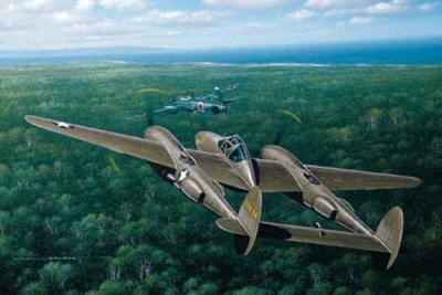 Yamamoto's Last Flight by Stan Stokes.