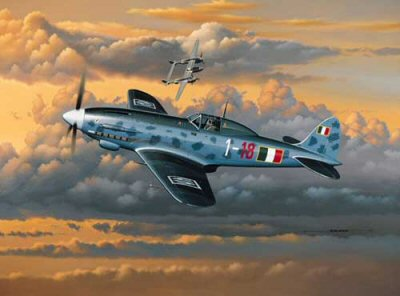 Italian Air Stallion by Stan Stokes.
