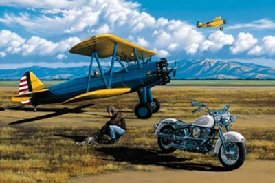 Two Ways to Fly by Stan Stokes.