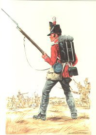 33rd Regiment of Foot 1815 by Douglas Anderson