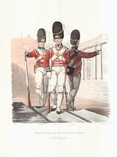 Grenadiers of the Foot Guards in Full Dress by J C Stadler after Charles Hamilton Smith.