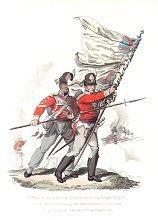IXth or East Norfolk Regiment of Infantry by J C Stadler after Charles Hamilton Smith.
