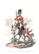 Private, 2nd or Royal North British Dragoons (Greys) by J C Stadler after Charles Hamilton Smith.