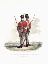 Privates of the First Regiment of Foot Guards on Service