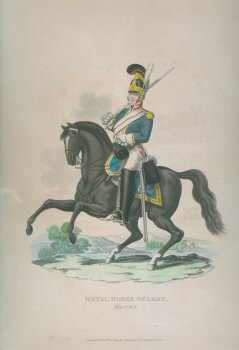 Royal Horse Guards, Blues by J C Stadler after Charles Hamilton Smith.
