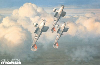 Hawker Fury IIs of 41 Sqn RAF by Keith Woodcock.